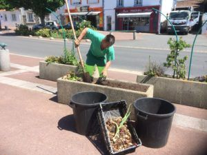 Les agents des espaces verts renouvellent les plantations du centre bourg